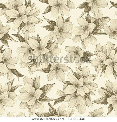 jasmine flower vintage google search