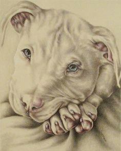 dog art dog poster pit bull pitbull dog print dog decor dog illustration dogpicture gift dog lover animal print animal art pitbull