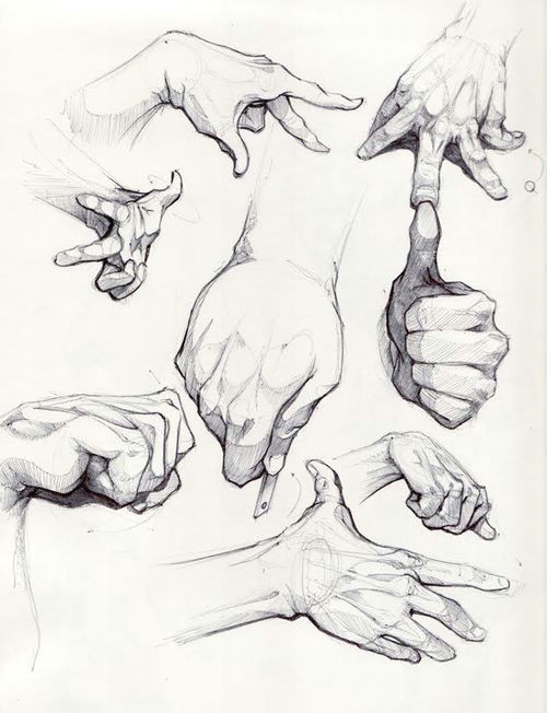 tumblr hand reference
