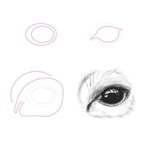 43ea021157e15461b256f05e07a1ab08 how to draw animals how to draw a deer jpg