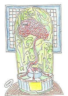 maze puzzles brainteaser education fun games leisure children