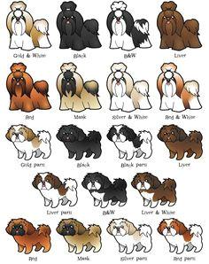 cartoon drawings of shih tzu dog shih tzu cartoon shih tzu cartoon perro