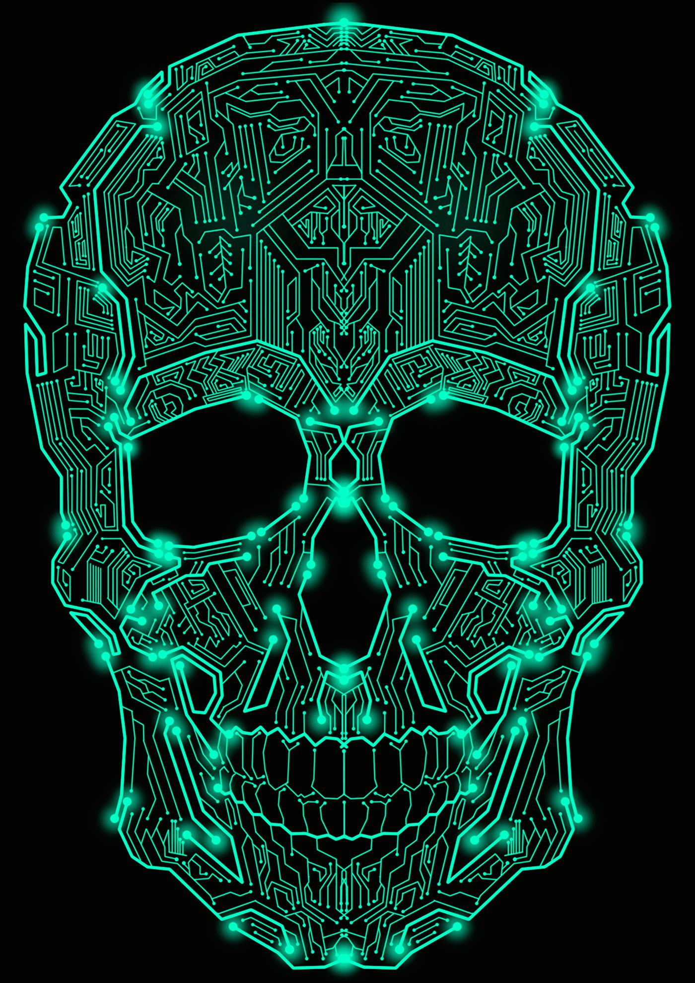 circuit skull