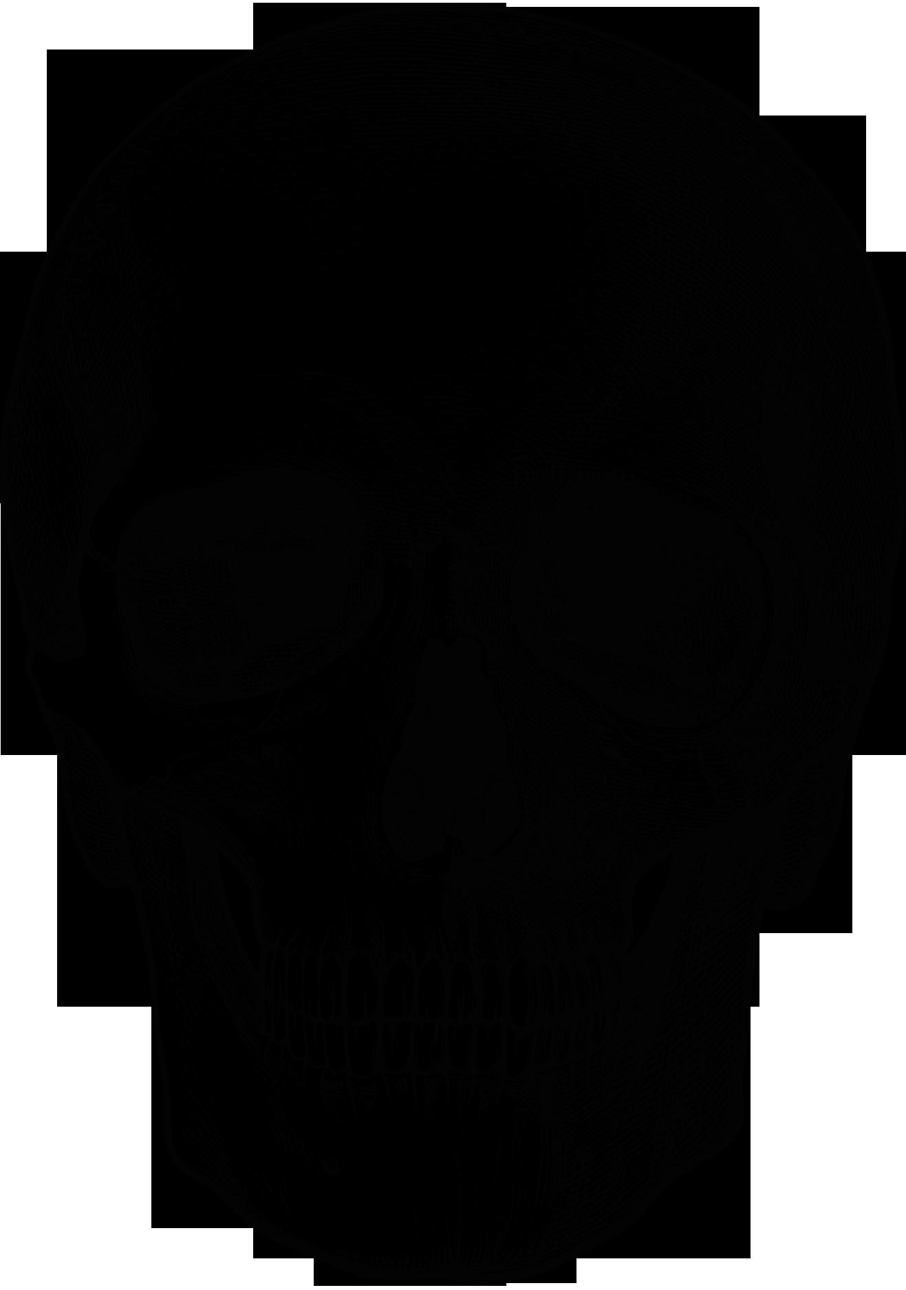 Drawing Skull Crossbones Vintage Skull Drawing for Photo Transfer Thanks A Pumpkin Spice