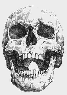 staying sane in the pre apocalypse skull sketchskull