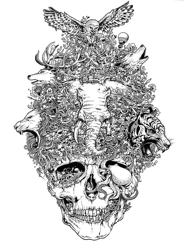 45c72fd00ca4abebc7e89bc65d807f38 jpg 736a 981 doodle coloring skull coloring pages coloring