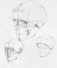a wonderful book die gestalt des menschen by gottfried bammes via pincg com anatomy
