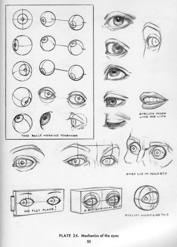 character design collection eyes anatomy