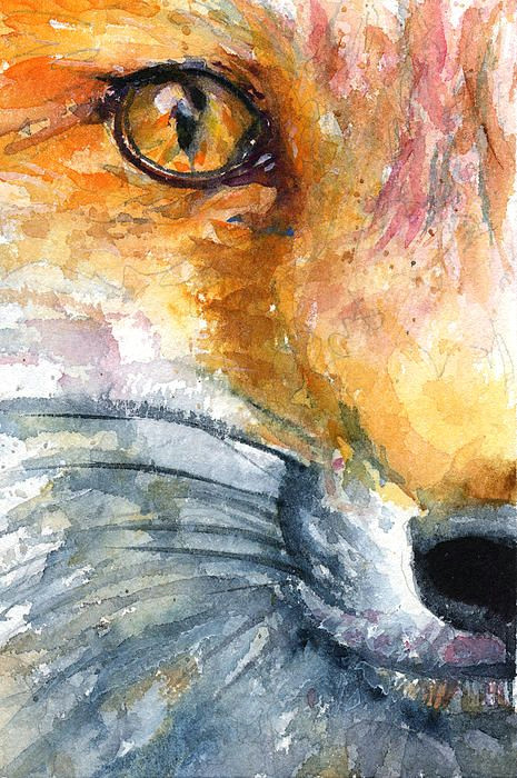 eye of fox 1 painting