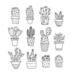 b w cactus drawing cute drawings tumblr line drawing tumblr line drawing tattoos flower