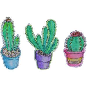 plants cactus transparent artists on tumblr cacti le pen