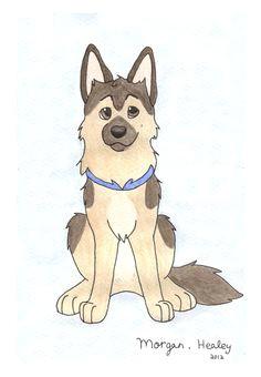 german shepherd dog drawingscartoon