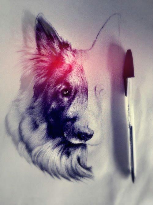 Drawing Tumblr Dog Tumblr Art Drawings Art Art Sketches