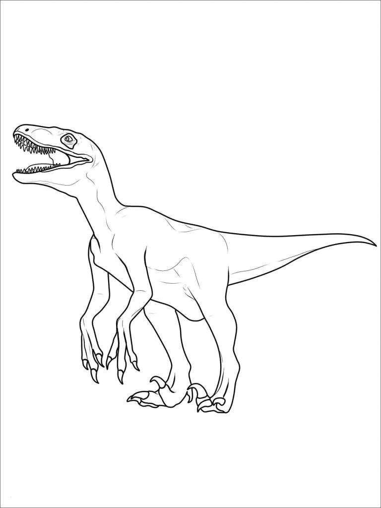 tyrannosaurus rex ausmalbild unique photographie tyrannosaurus rex drawing fresh ausmalbilder t rex 35 ausmalbilder