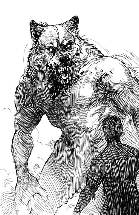 claire hummel shoomlah com illustrations werewolf art werewolf wolf