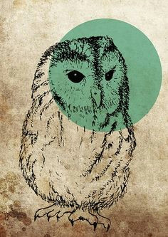 the quietest people have the loudest minds by dylan vogel owl art printmaking