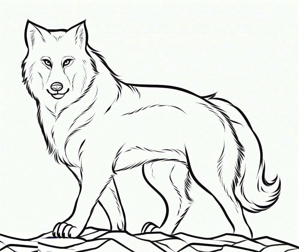 black and white wolf coloring pages awesome luxury wolf coloring pages davis lambdas