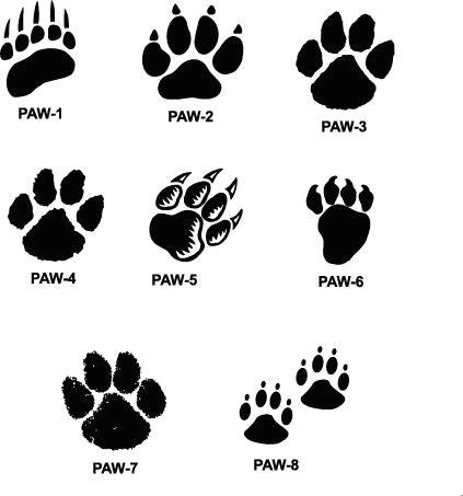 tiger paw prints walking drawing cougar paw prints cougar paw prints xpx promotional products and