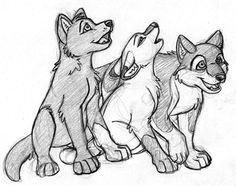 1000 images about lobos anime on pinterest a wolf wolf s rain