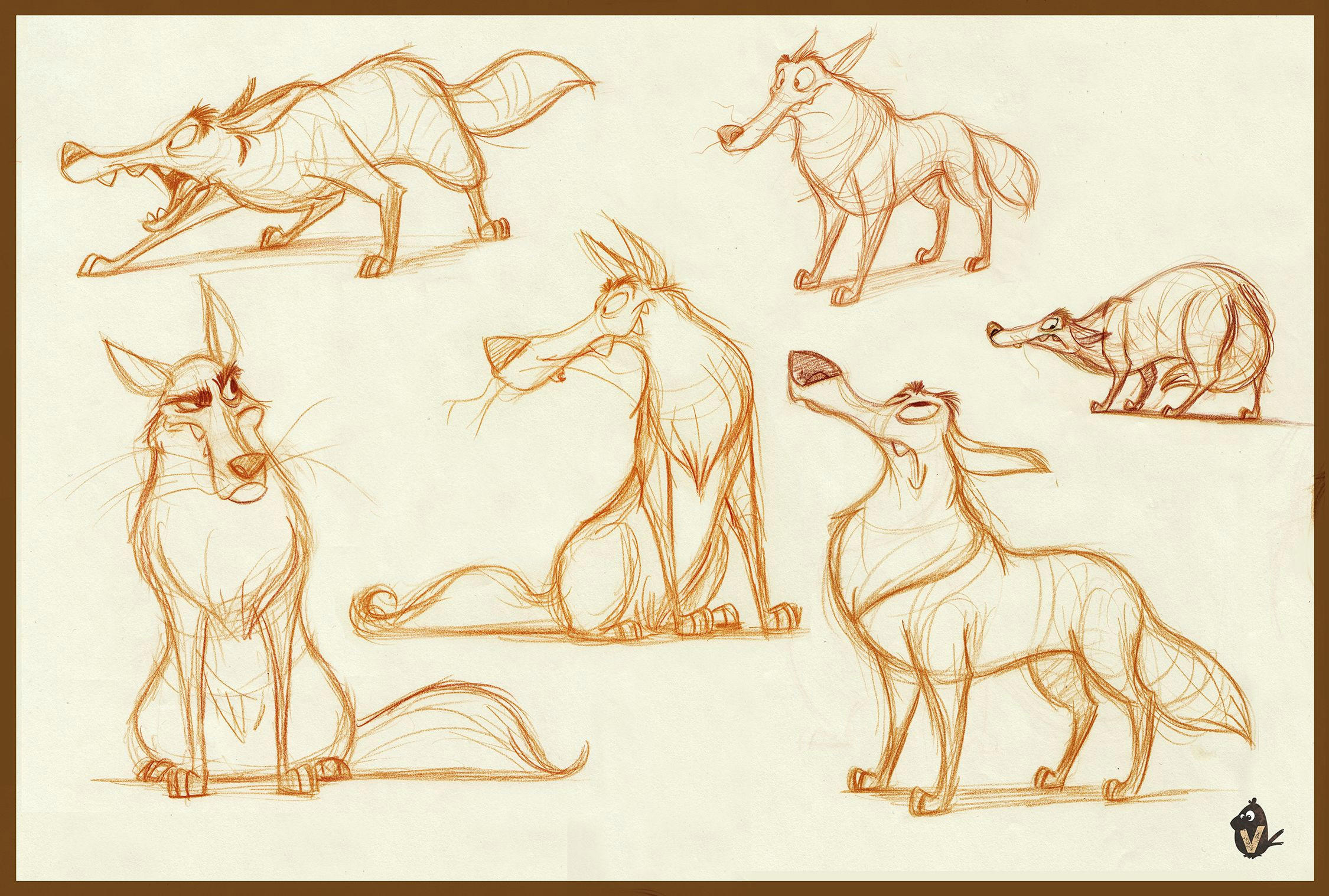wolf explorations