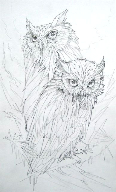 a drawling of two owls