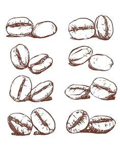 80 off sale coffee bean hand drawn vector sketch of coffee beans hand drawn coffee vector clipart