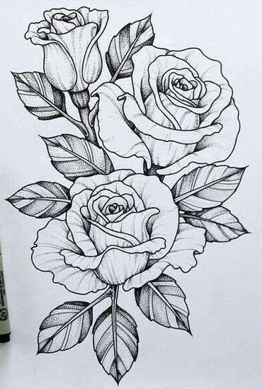 5b712e8788ec647f851121b6199c42ea jpg 370a 550 flowers drawn rose flowers rose sketch