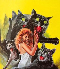 evil cats amber phillips that s enough internet for the day cat attack cool