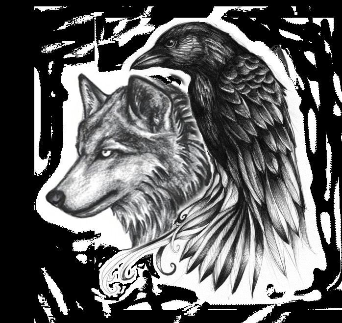 ravenwolf4 png 698a 658 viking tattoos celtic raven tattoo wolf