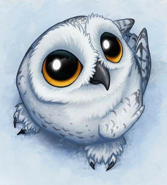 cartoon bird drawing cute owl drawing cartoon eyes owl cartoon baby cartoon