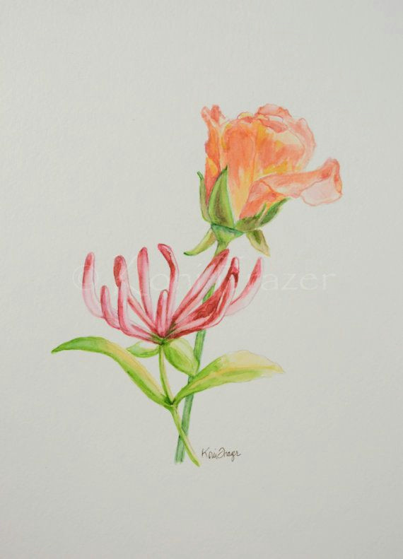 rose and honeysuckle june birthday flower original by konifrazer