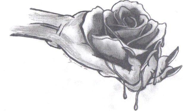 12 best bleeding roses images bleeding rose black rose flower gothic wallpaper
