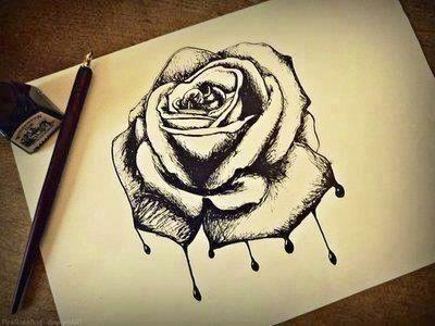 Drawings Of Bleeding Roses 12 Best Bleeding Roses Images Bleeding Rose Black Rose Flower