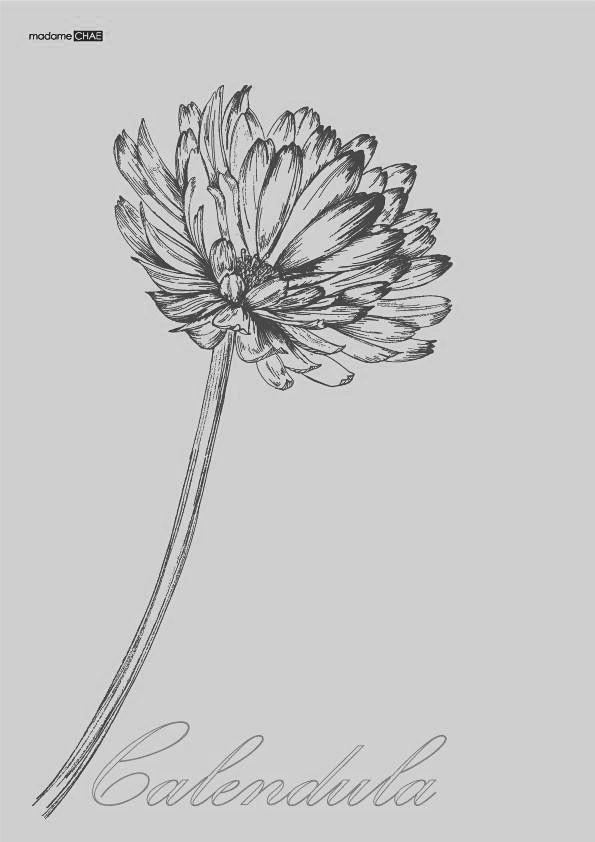 calendula flower tattoo for niece nephew birth month