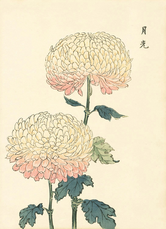 flowers asian art
