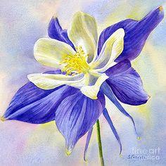 sharon freeman artwork collection misc flowers