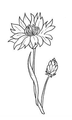cornflower flowers coloring pages 3d pen stencils paper flower wreaths flower coloring pages