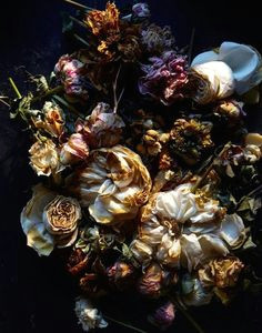 dead flowers if i use plates for my idea i would like to have a full