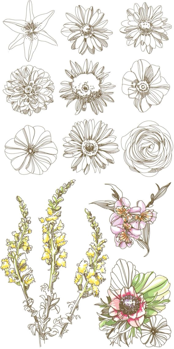 d d n n d simple flower drawing daisy flower drawing flower design drawing delicate flower tattoo