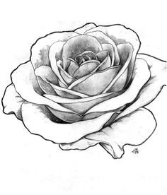 Drawings Of Detailed Roses Image Result for Detailed Flower Outline Art Tattoos Rose