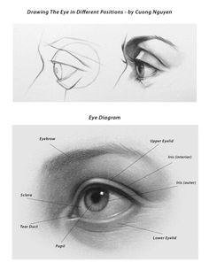 cuong nguyen drawing lessons drawing techniques drawing tips drawing reference drawing sketches