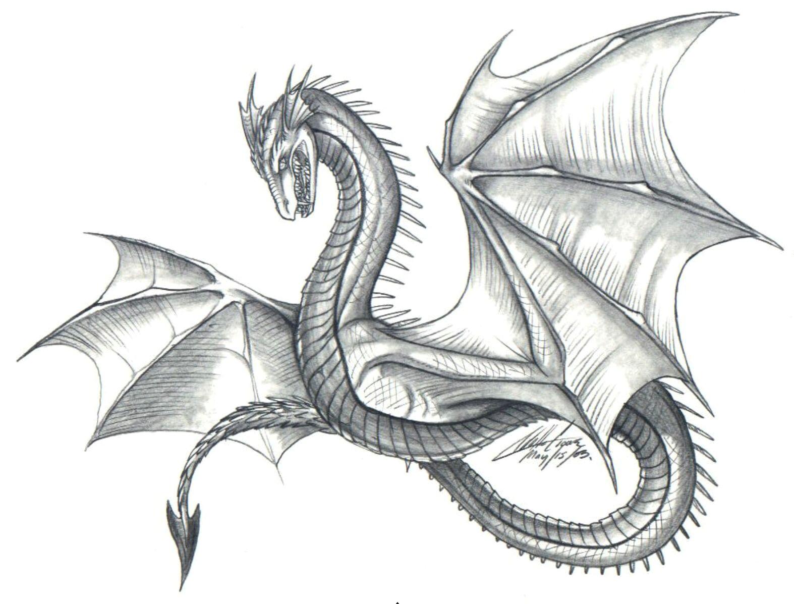 easy dragon easy dragon dragon drawings in pencil