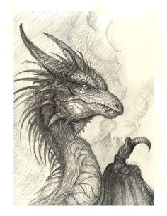 dragon drawings how to draw a dragon realistic dragon dragon s lair fantasy dragon