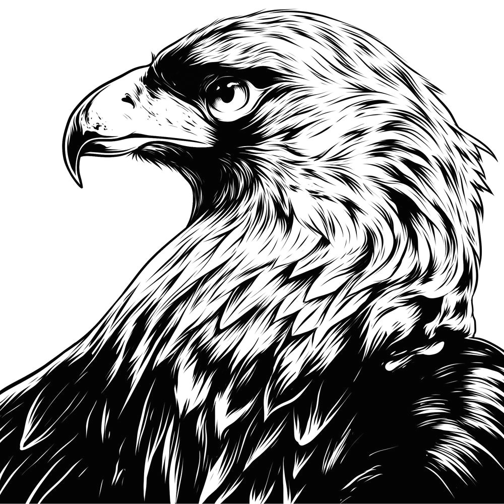 eagle eye in the big smoke on behance