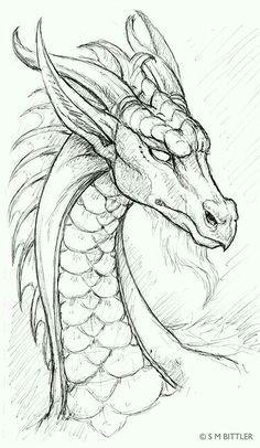 dragon pencil drawing cool drawings drawings for dad fantasy drawings detailed drawings