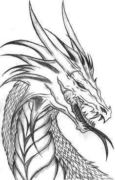 cool dragon plz draw it cool dragon drawings dragon head drawing dragon head tattoo