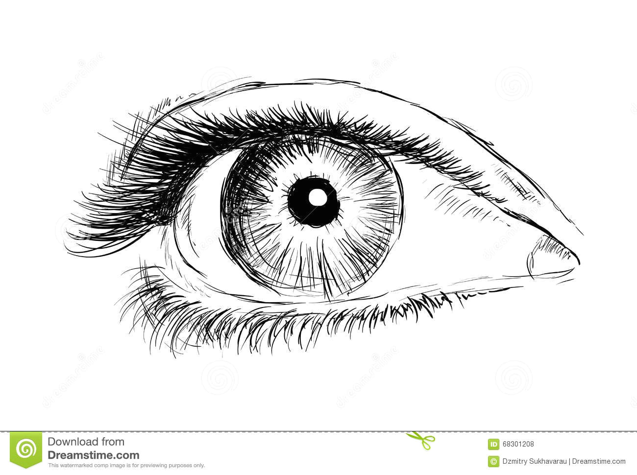 hand drawing eye on a white background