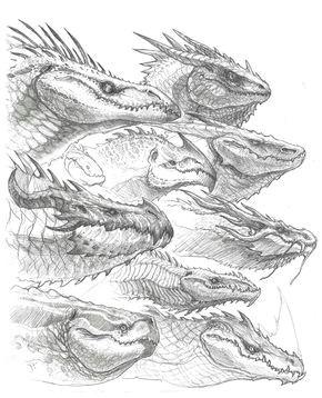 dragon head sketches john tedrick on artstation at https www artstation