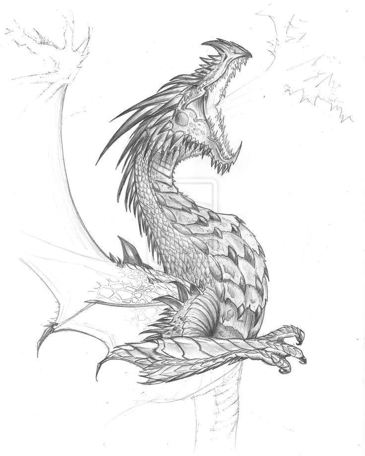 Drawings Of Fantasy Dragons Pin by Tambre Kay On Expression Dragon Dragon Sketch Realistic