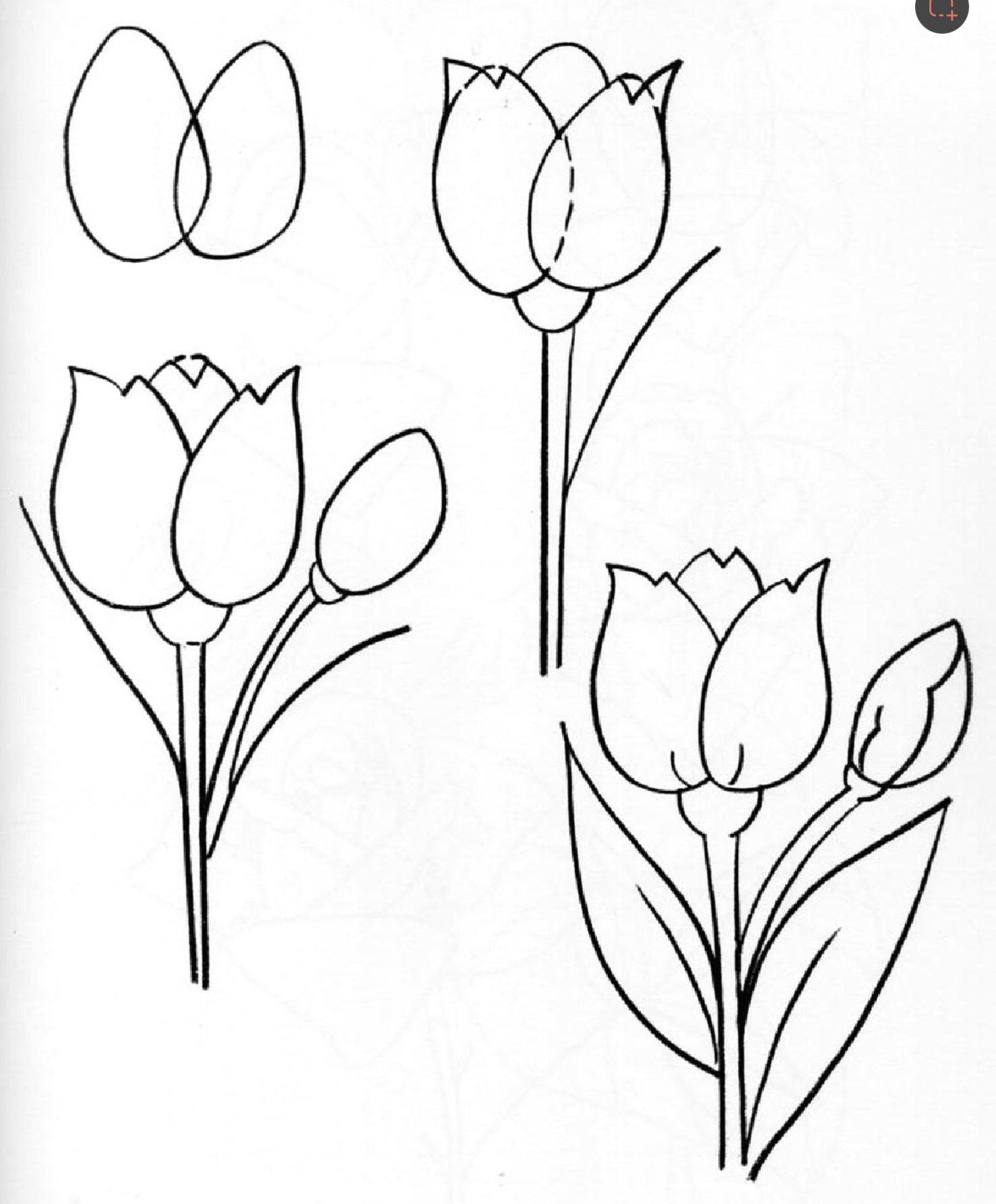 to draw flowers flowers